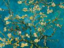 עץ , ואן גוך, שקדיה, כחול, אמנים מפורסמים, וינסנט ון גוך, ון גוך שקדיה - ואן גוך